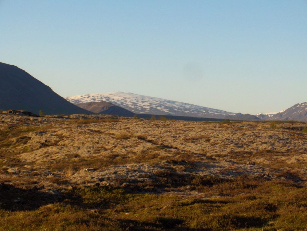Skjaldbreið shield volcano
